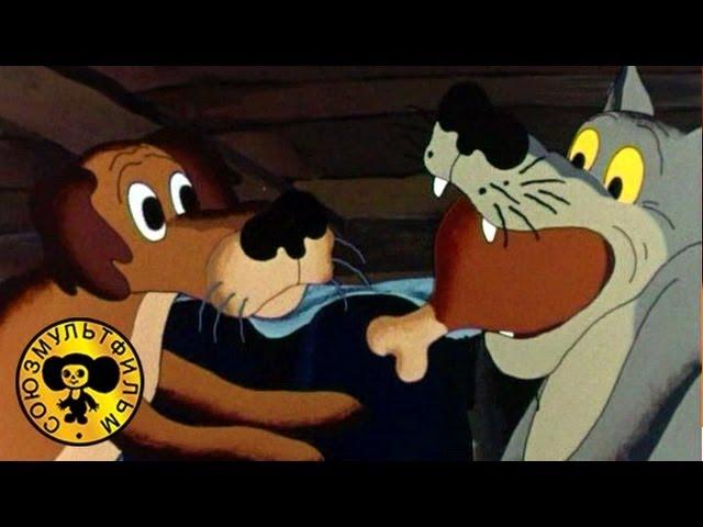 Советские мультфильмы смотреть бесплатно лучшие мультики
